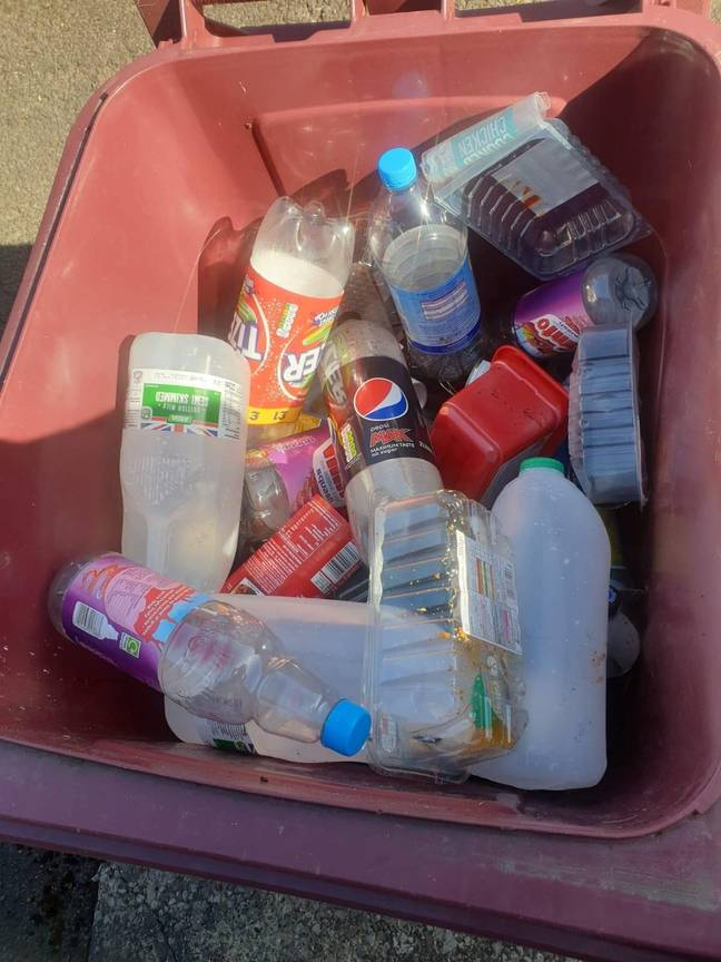 This is what Mr Watts claims was in the bin. Credit: SWNS
