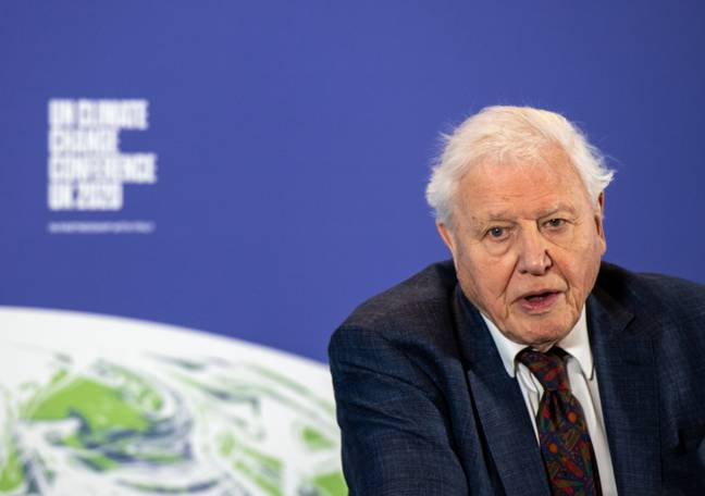Sir David Attenborough and Dave are collaborating on a new Planet Earth special. Credit: PA