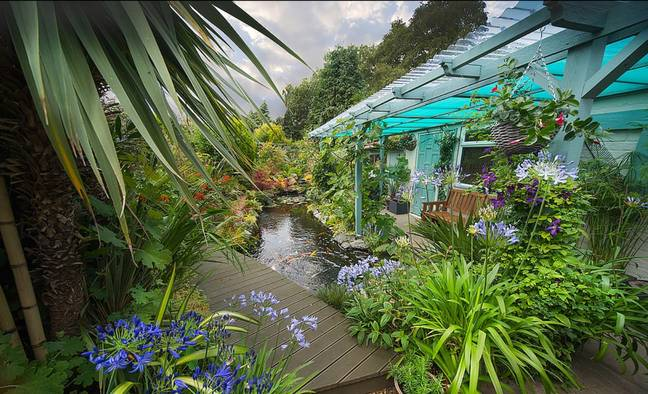 David and Sandra have transformed their back garden into their 'tropical fantasy'. Credit: Caters