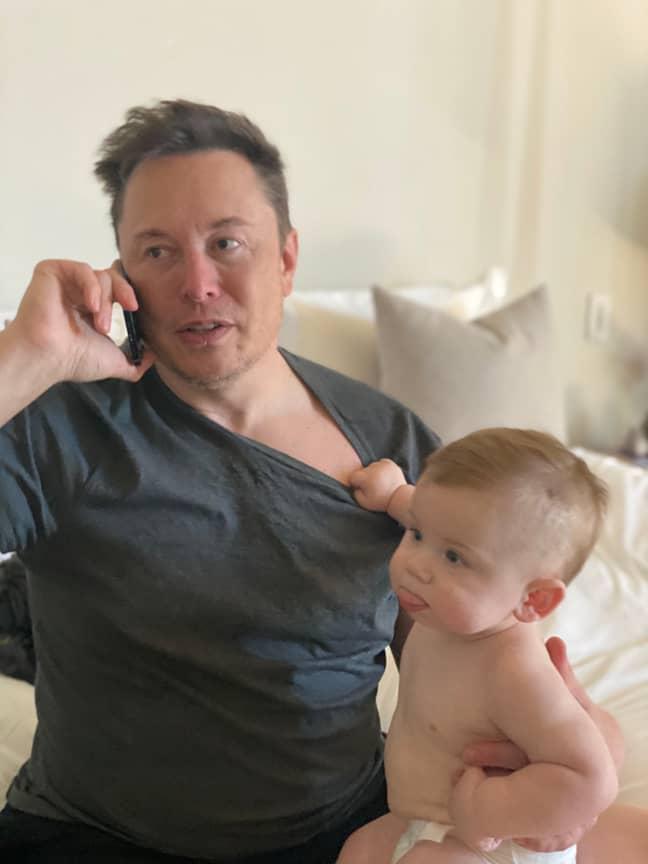 Credit: Twitter/Elon Musk