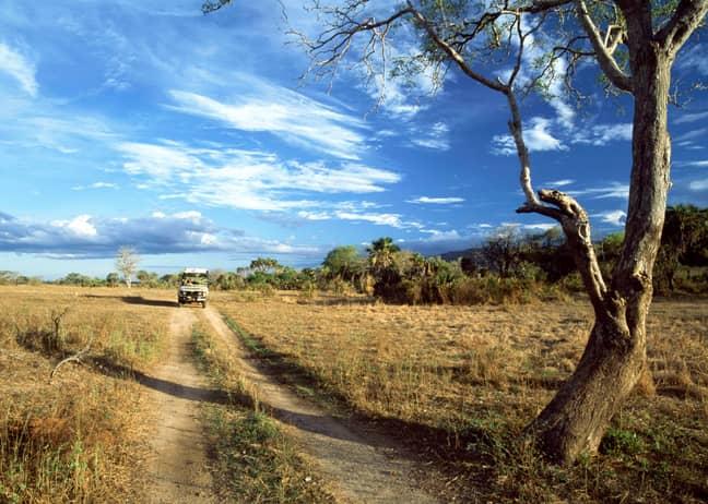 Tanzania's Selous Game Reserve. Credit: PA