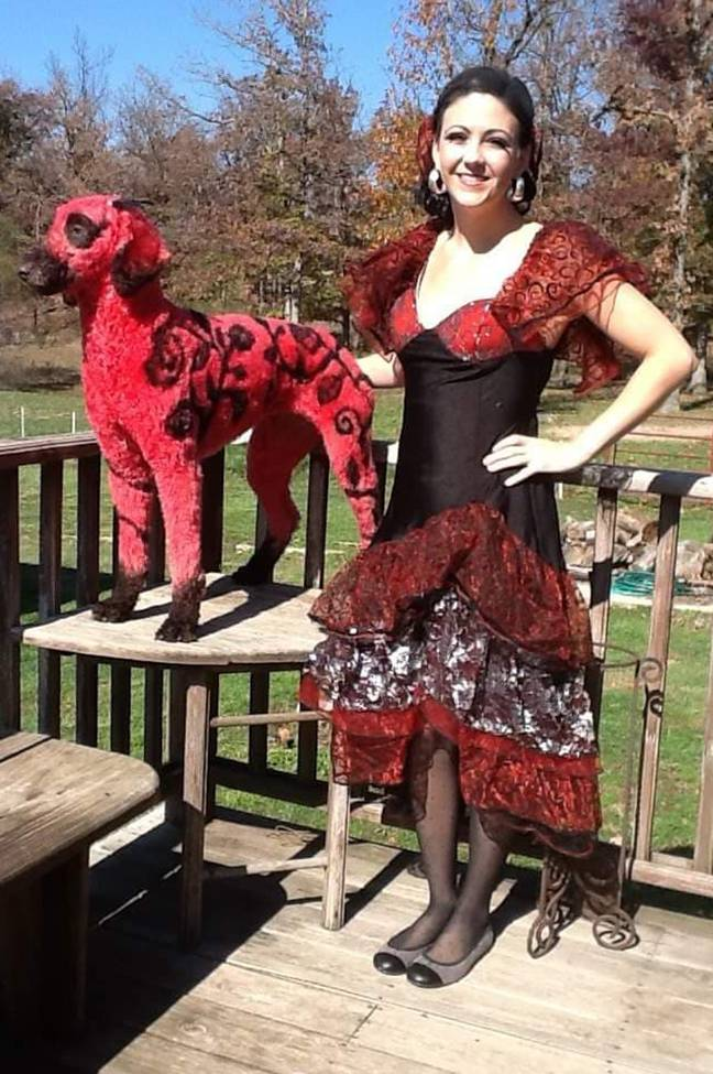 Rachelle Lynn McGinnis transforms her dog with all sorts of weird designs. Credit: Caters
