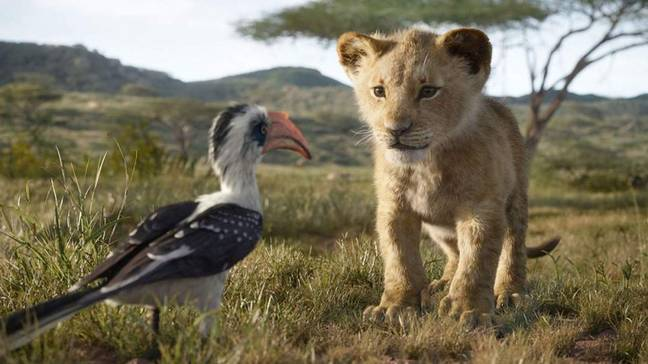 A dad in New Zealand has urged parents not to take their children to evening screenings of The Lion King. Credit: Disney