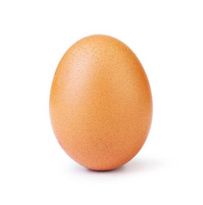 The record-breaking egg. Credit: Instagram