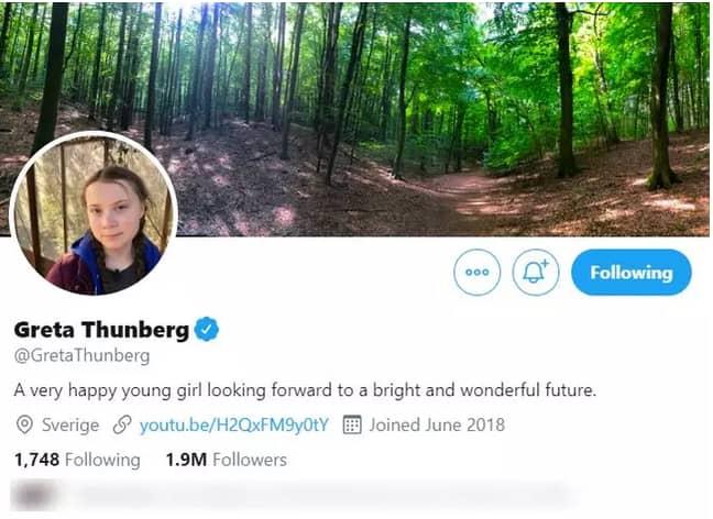 Greta changed her bio to troll Trump. Credit: Twitter