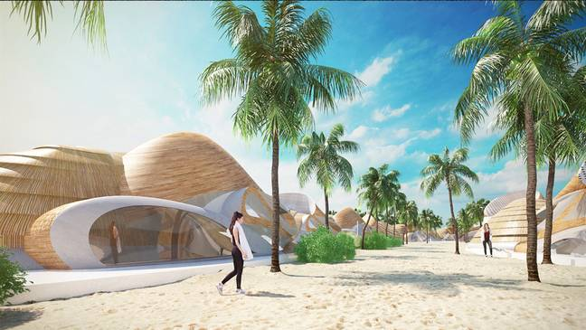 The city will have an African Culture Village. Credit: akoncity.com