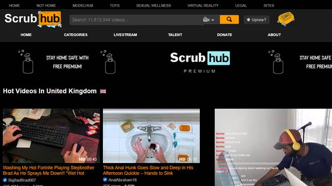 Some of examples of what Scrubhub has to offer. Credit: Pornhub