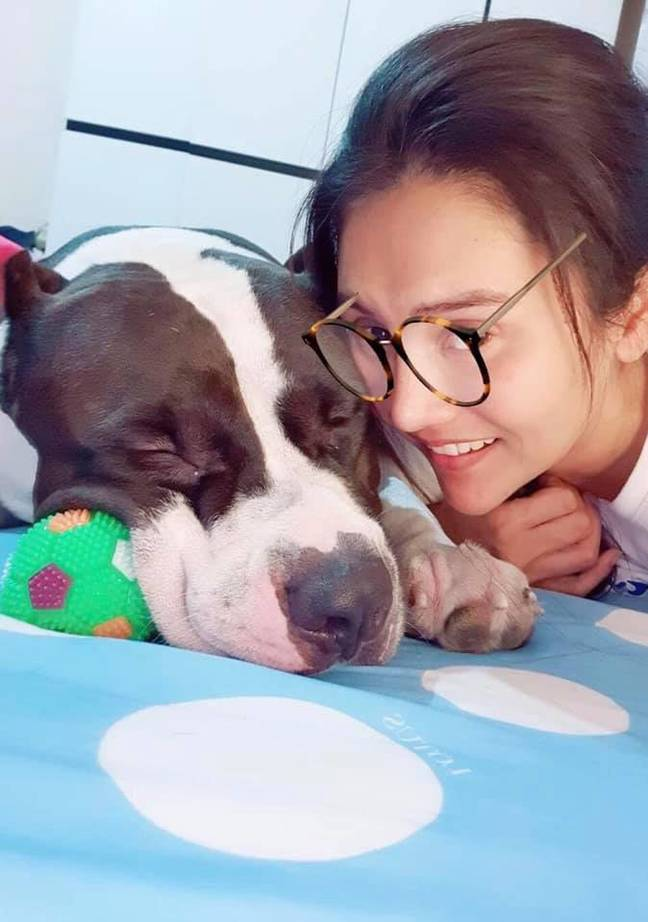 Bully the dog and his owner. Credit: Viral Press