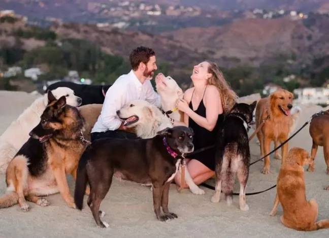 The therapy dogs surrounding Laura and Maurice after his romantic proposal. Credit: Rebecca Yale Photography/Laura Stampler