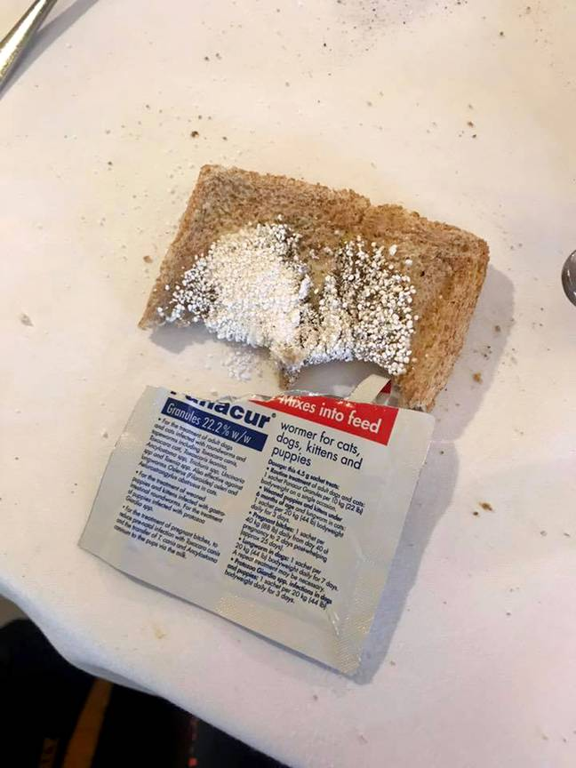 The dog worming powder is sprinkled on toast. Credit: Caters