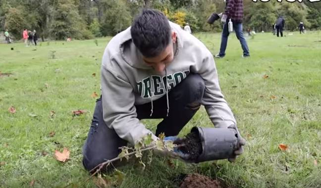 A group of YouTubers have launched a campaign to plant 20 million trees. Credit: YouTube/MrBeast
