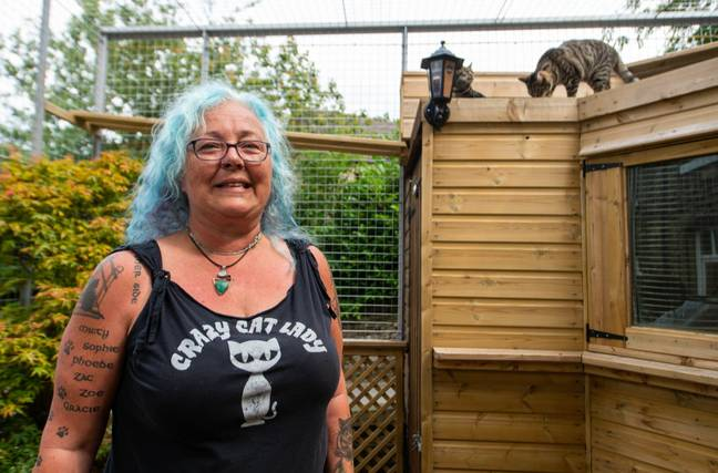 Sue with some of her cats. Credit: SWNS