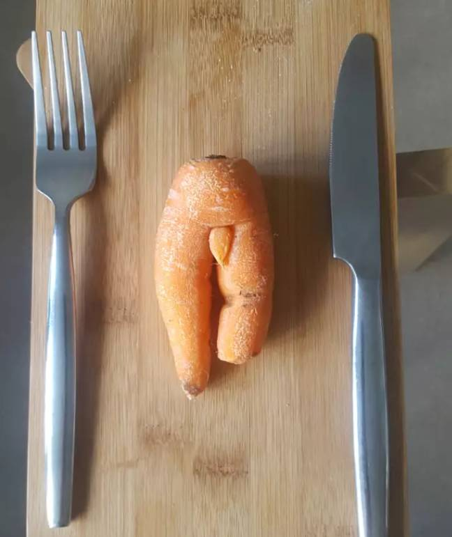 Another willy-carrot found earlier this year. Credit: SWNS