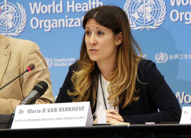 The WHO are in emergency talks as to whether the coronavirus outbreak is a Public Health Emergency of International Concern. Credit: PA