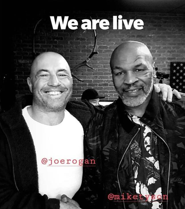 Tyson and Rogan smoked weed together during the podcast. Credit: Joe Rogan/Instagram