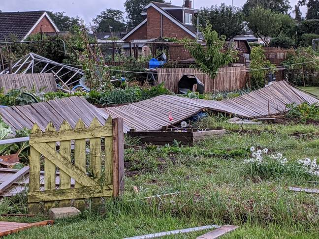 A local allotment was trashed. Credit: SWNS