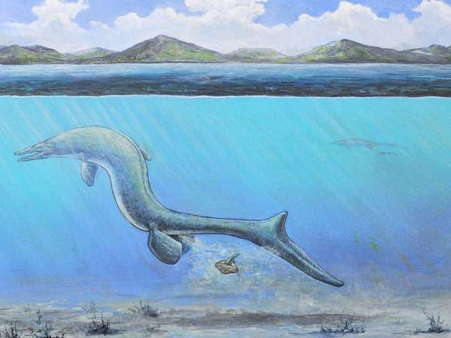 An artists impression of what could have happened. Credit: Jackson's School of Geological Sciences