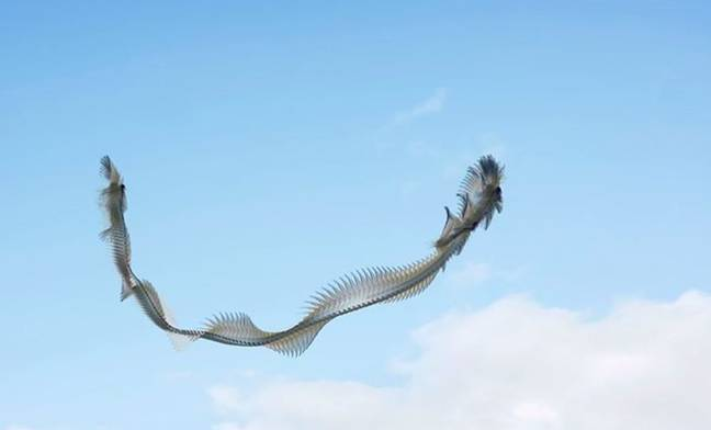 A flock of birds, or a dragon? Credit: Xavi Bou