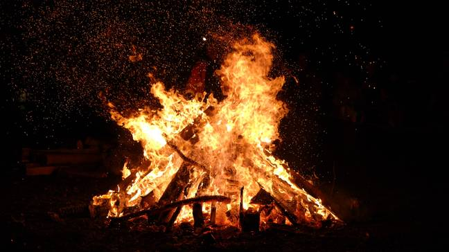 Bonfires can also kill wildlife and destroy creatures' homes. Credit: PA