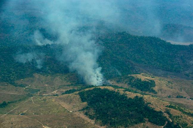 The fires pose a huge threat to the forest's indigenous people. Credit: PA