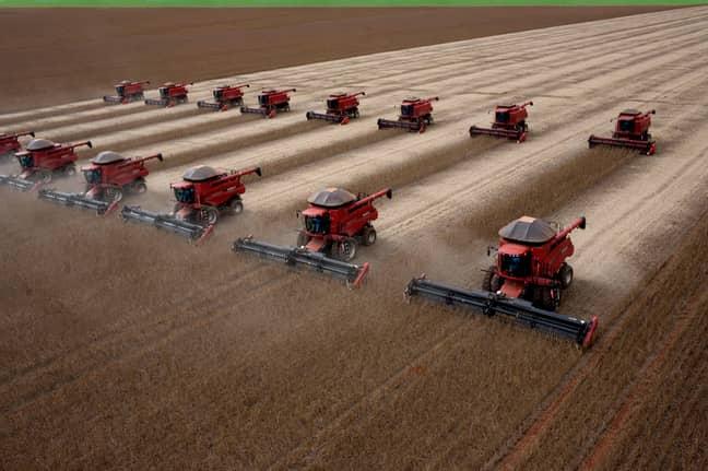Soybean harvesting in Brazil. Credit: PA