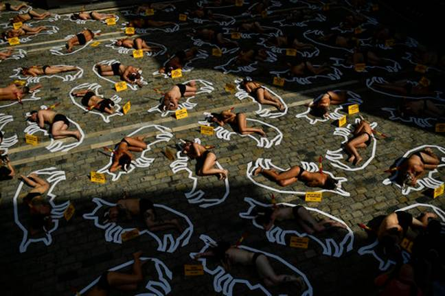 Demonstrators protesting against bullfighting over the weekend. Credit: PA