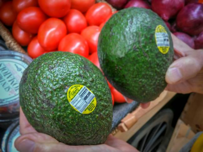 The US could run out of avocados in just three weeks if it closes Mexican border. Credit: PA