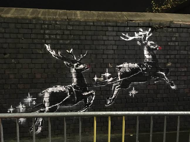 Someone appears to have added red noses to the reindeers overnight. Credit: Caters