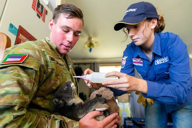 A soldier from The Australian Army cradles a koala affected by the bushfires. Credit: Facebook/ The Australian Army