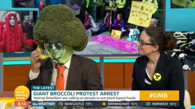 Peas didn't like it when Mr Broccoli answered the banana. Credit: ITV/Good Morning Britain
