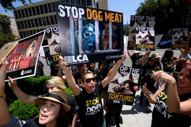 Protestors against the dog meat trade in Los Angeles. Credit: PA