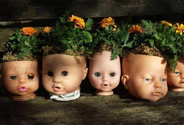 York Town Flower Shoppe in Vancouver is selling the doll's head planters. Credit: Instagram/@yorktownflowershoppe