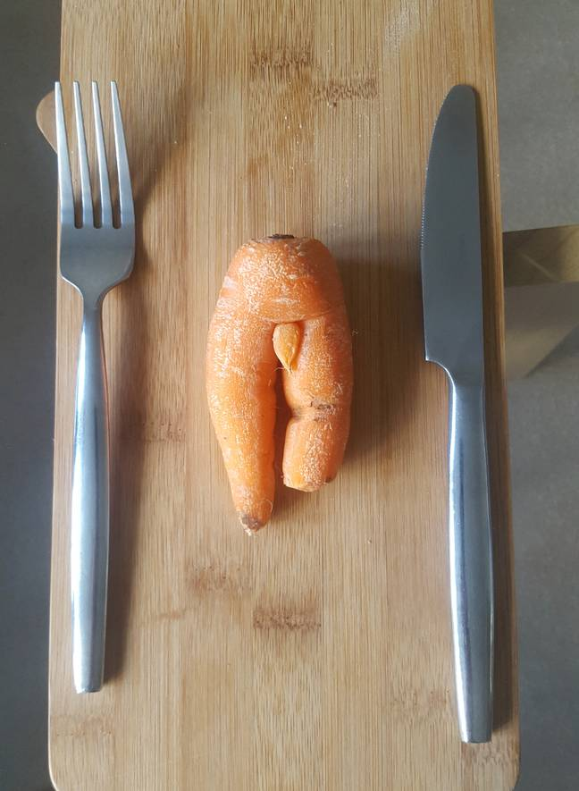 The offending carrot. Credit: SWNS