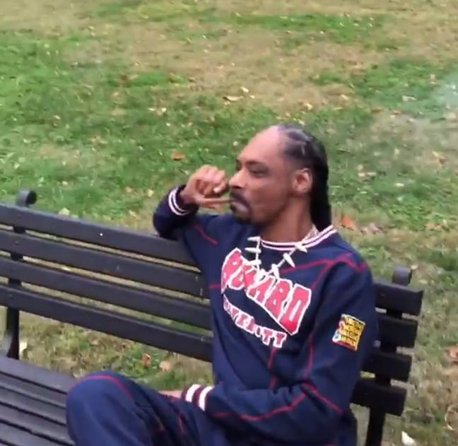 While smoking a joint outside the White House, Snoop Dogg said: