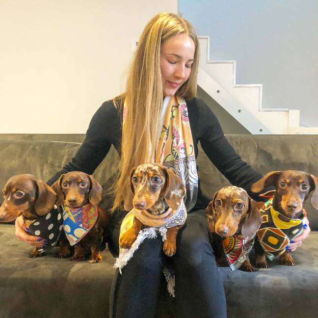 Harriet and her puppy posse. Credit: Caters