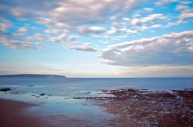 Sandown Bay, where the fossil was discovered. Credit: Solent News