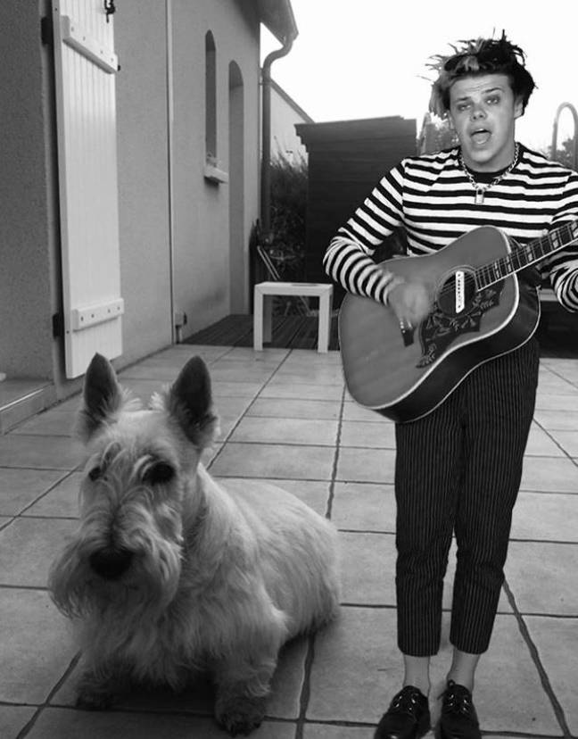 Performing with someone's pooch. Credit: Instagram