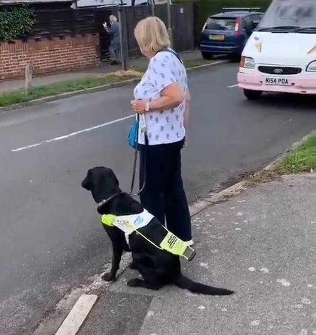 If someone with a guide dog rests the handle on their dog's back, they need help. Credit: TikTok/Jemma Brown