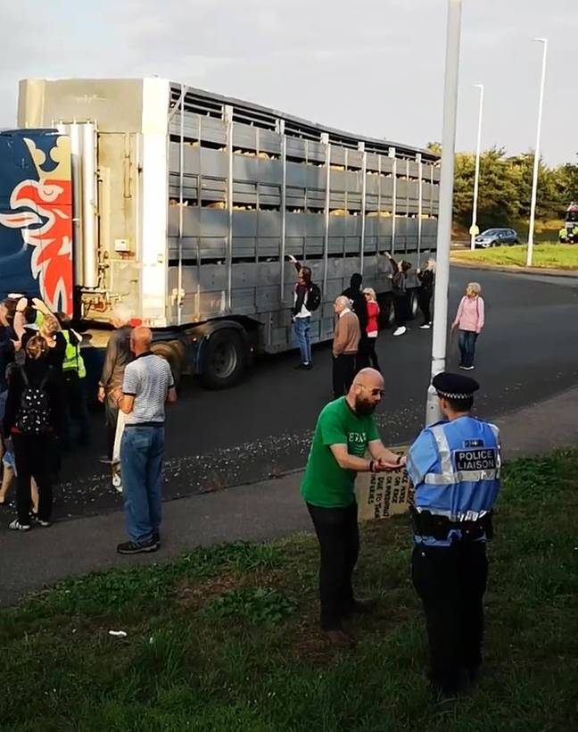 The lorry was apparently carrying sheep. Credit: Kennedy News
