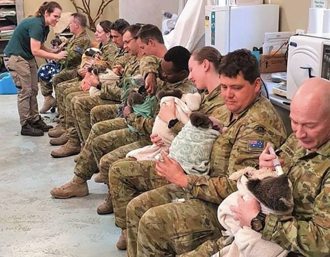 Soldiers used their rest time to look after some of the koalas affected. Credit: Facebook/ The Australian Army.