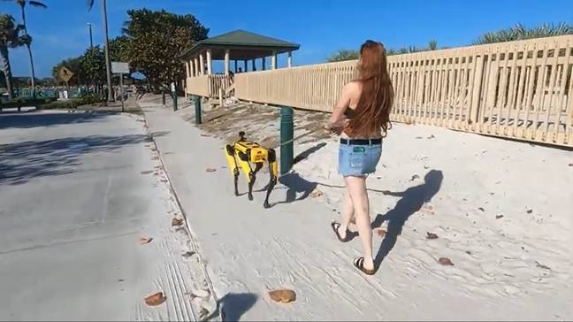 Credit: Scrappy The Robot Dog/YouTube