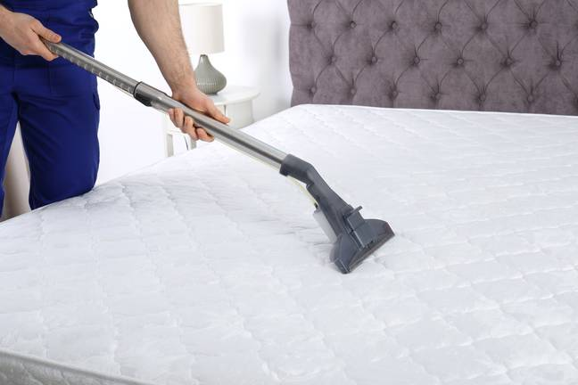 Get that hoover out. Credit: Shutterstock