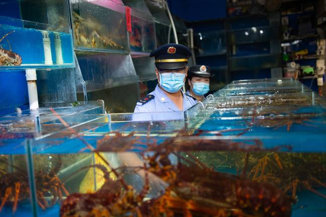 Staff from the market supervision administration of Fengtai District inspect the sea food trading hall of the Yuegezhuang wholesale market in Beijing. Credit: PA