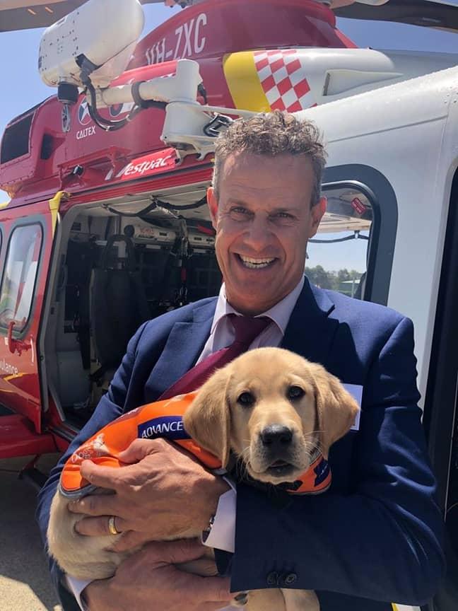 Tim Crakanthorp MP with a guide dog called Woody. Credit: Facebook/Tim Crakanthorp MP