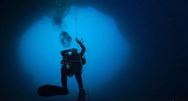 A diver exploring the Amberjack Hole. Credit: Mote Marine Laboratory