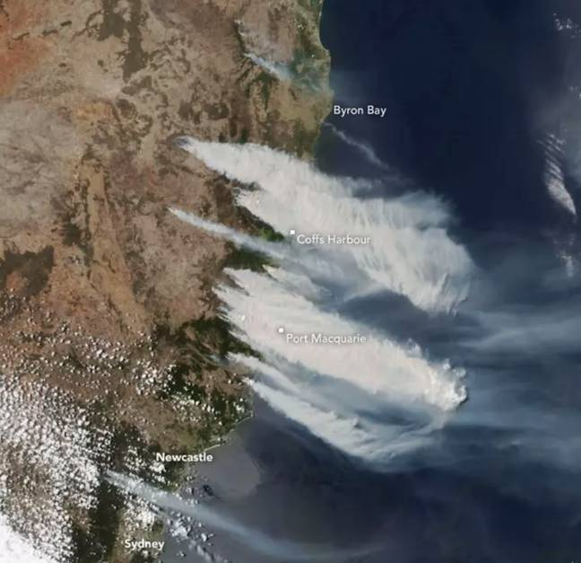 A picture showing the bushfires on 8 November. Credit: NASA Earth Observatory