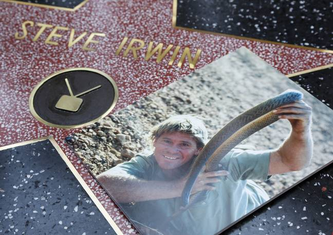 Irwin was honoured with a star on the Hollywood Walk of Fame. Credit: PA