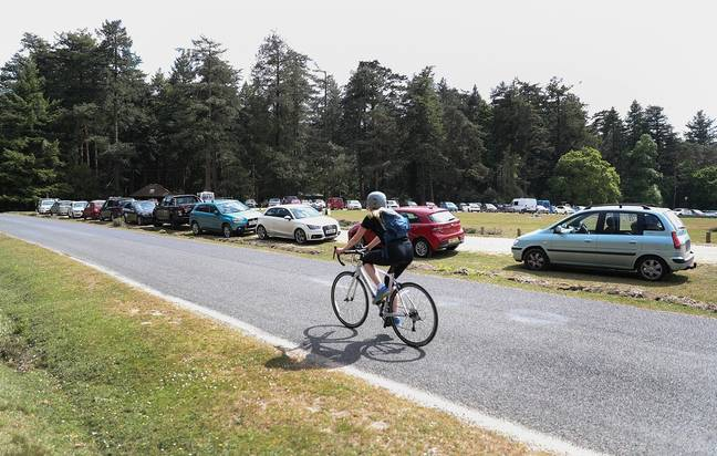 Cars parked outside Bolderwood Deer Sanctuary in the New Forest. Credit: PA