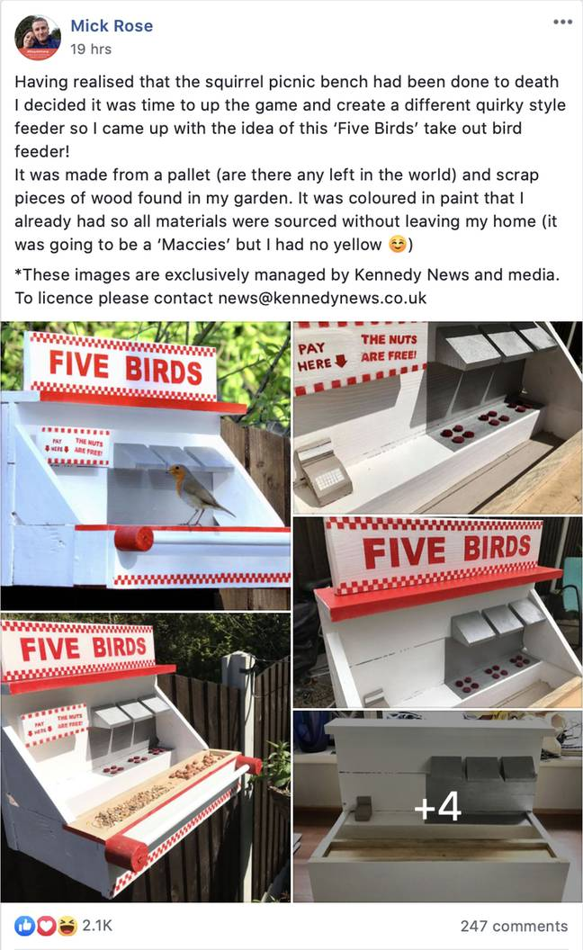 Mick's feeder was a hit on social media. Credit: Kennedy News and Media
