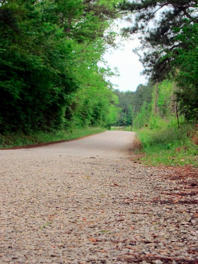 This April 12, 2019, photo shows a section of Huff Creek Road in Jasper, Texas, where James Byrd Jr. was dragged. Credit: PA